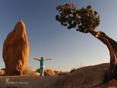 Click on photo to see full photo gallery of Joshua Tree Natl Park